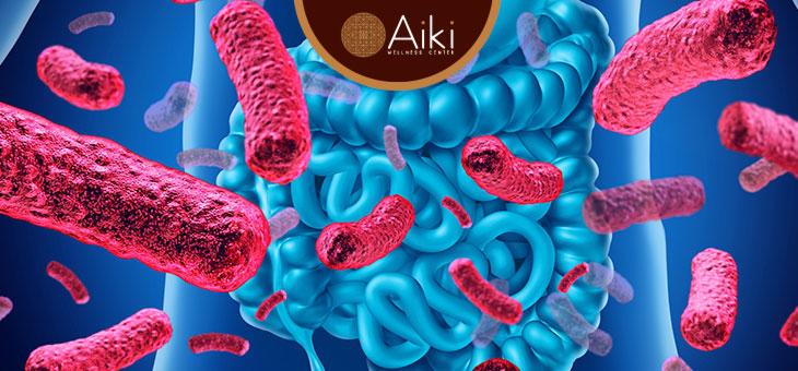 ¿Cómo tener una microbiota intestinal saludable?